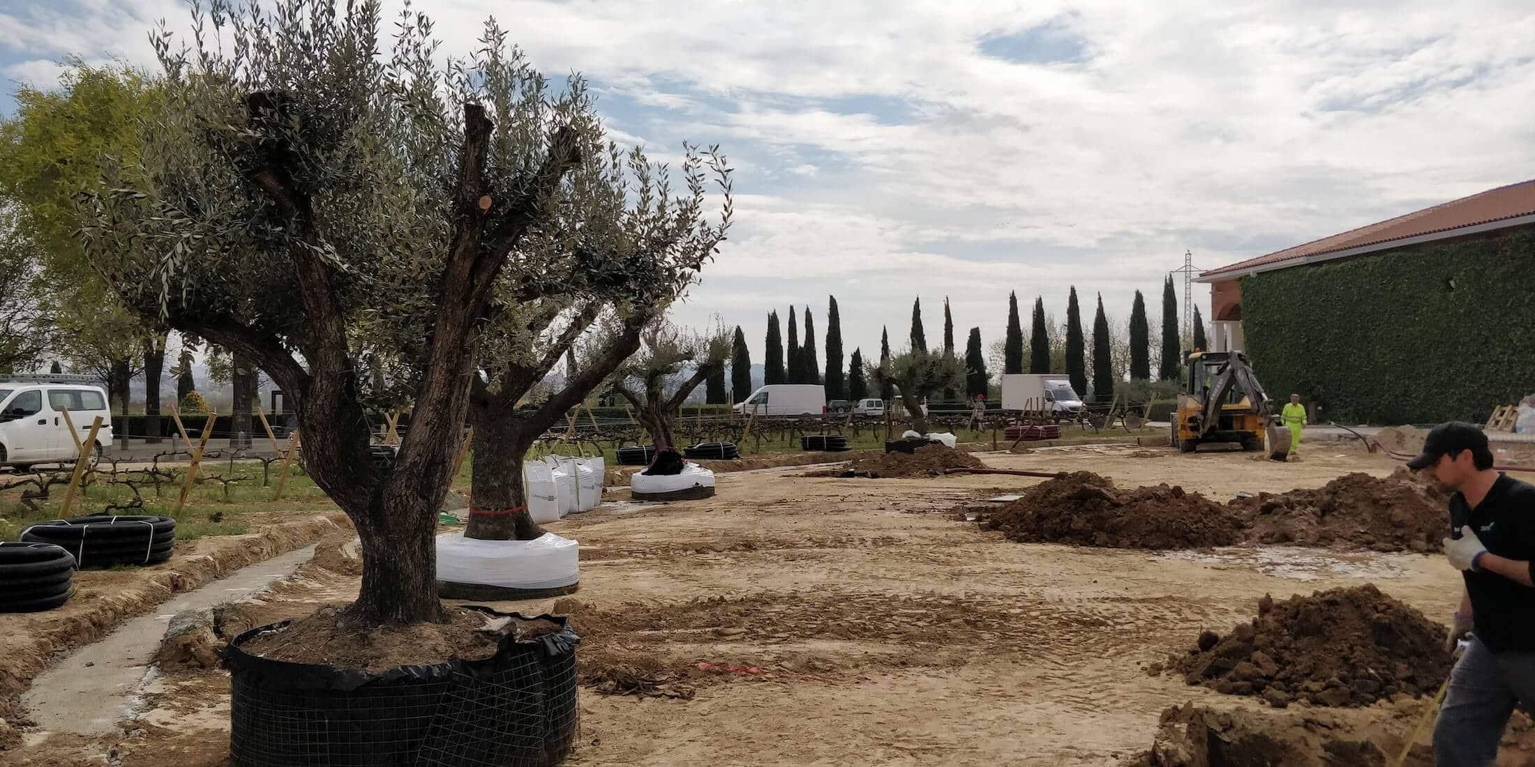 Jardín en Cataluña