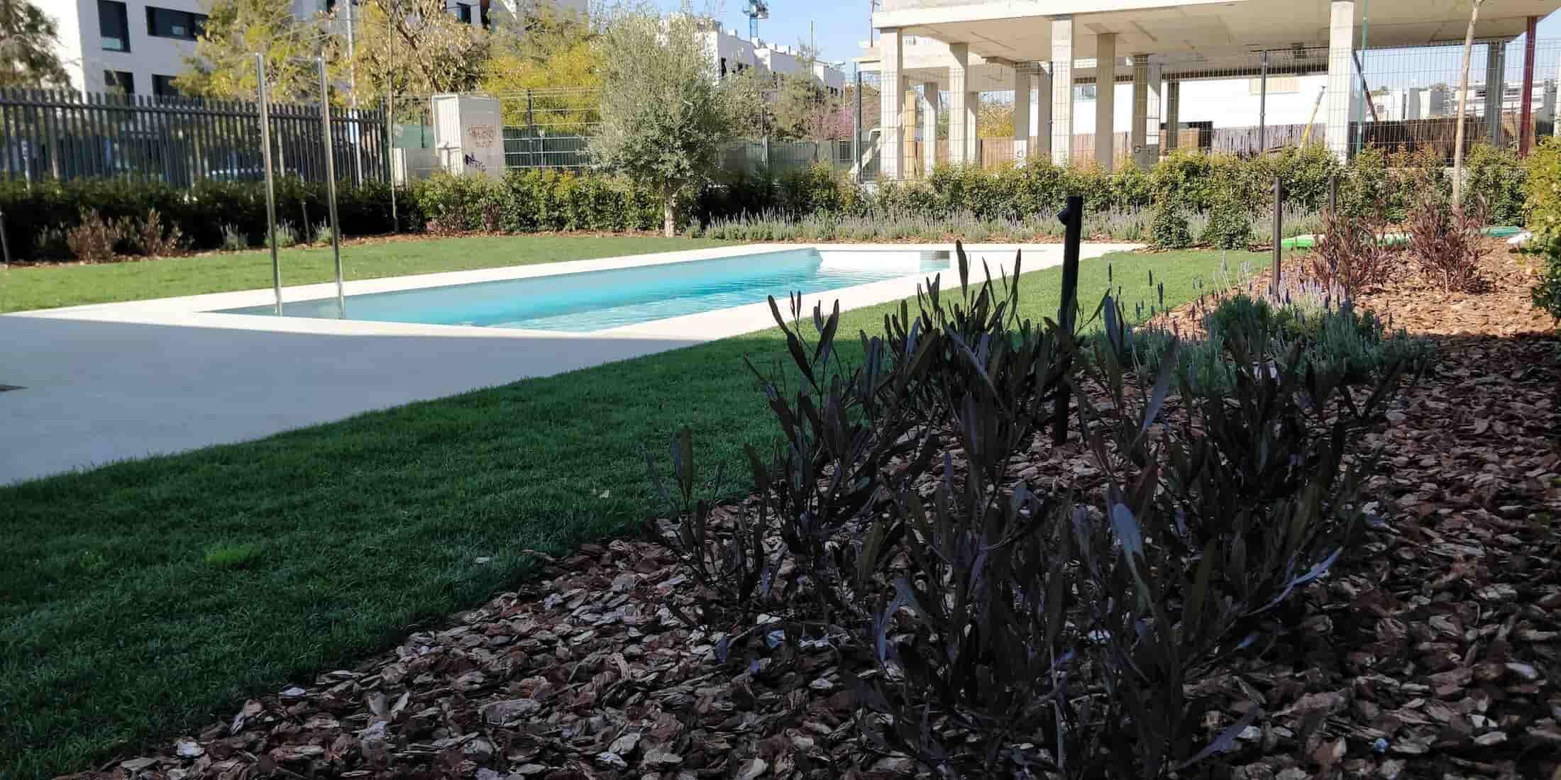 Projecte piscina