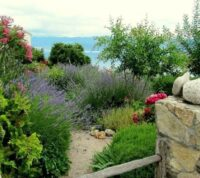 12 claves y consejos para crear un buen jardín mediterráneo